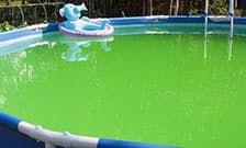 Чистая вода без водорослей или как бороться с «зеленой» водой